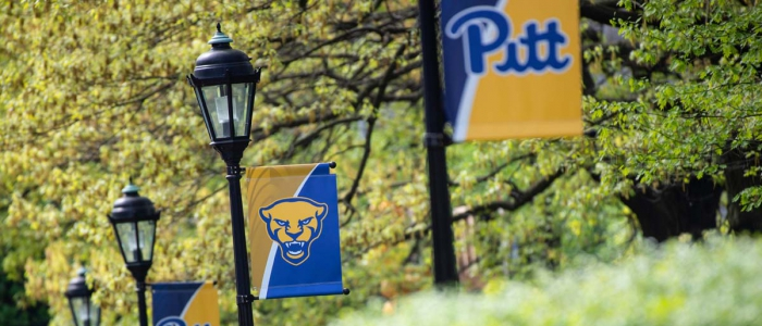 Pitt banners hang from lamp posts in Oakland